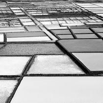 Saltworks von PASCUAL MARTINEZ