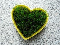 Grass heart by maudke
