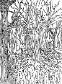 Mangrove Brazil by Paulo Brasil