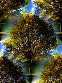 Sonniger Herbst by Cornelia Greinke