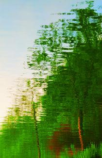 Master Tree von Andrea Capano