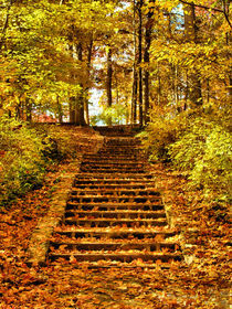 Miller-park-golden-steps