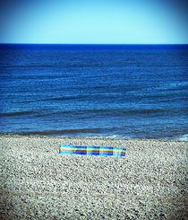 Windbreak on Budleigh Salterton Beach by Craig Joiner