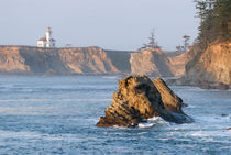 Cape Arago Lighthouse von Betty LaRue