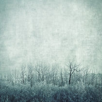 'pondering silence' by Priska  Wettstein