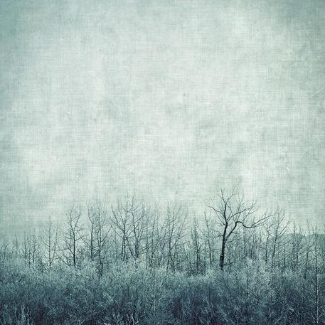 Treesinbluetones