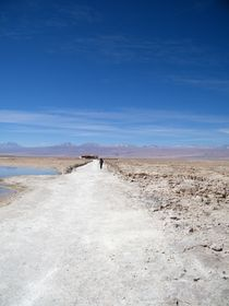 Atacama Salt, Chile. by raisa pavlov