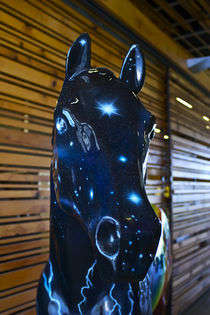 Stars in His Eyes (Art Horses #6) by photography-by-odille