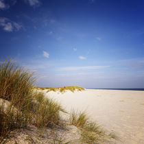 0105-sylt-impressions-51