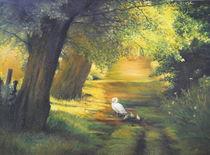 A ray of sunshine / Ein Sonnenstrahl by Apostolescu  Sorin