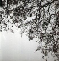 Lomoposadas-19