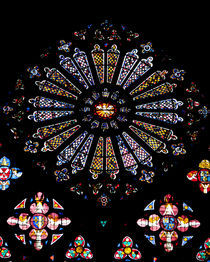 Rose Window by safaribears