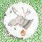 Moose2-color