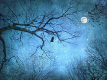 Winternacht von Franziska Rullert