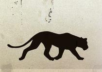 black panther von hanna streif