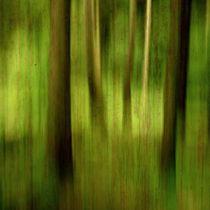 Wald-mit-rosttextur-2