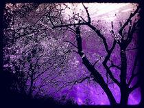 Purple fantasy by Sandra  Lock