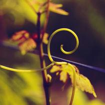Glowing tendril by Nathalie Knovl
