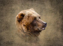 Profile of a Grizzly Bear by Betty LaRue