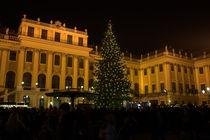 Wien - Schönbrunn im Advent by Harald Dotter