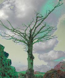 Tree in a Storm von Andreas Charitonos