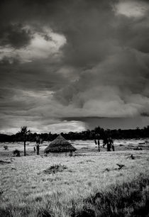 Storm in the Gran Sabana Venezuela by Juan Carlos Lopez