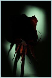Dark-heart-1