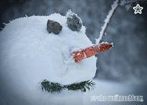 """Weihnachtskarte """"Frosty Smiles"""" von Sonja Dürnberger"""