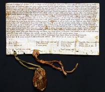 Royal Privilege, year 1045. Privilegio real año 1045.  by RicardMN Photography