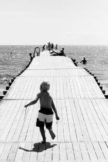 Swedish Summer by Cecilia Walerud
