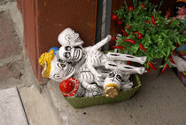BOX OF SKELETONS Oaxaca Mexico by John Mitchell