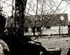 Backyards-jpg-large-watermarked