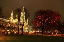 Christmas market in Vienna, Austria. von Nisa Maier