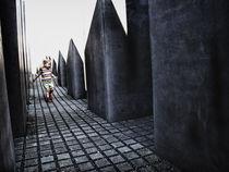 the holocaust redemption von Maria Victoria Anelli
