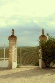 gates of heaven von Maria Victoria Anelli
