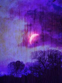 Rising Moon by Robert Ball