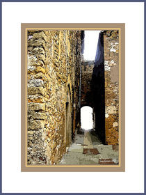 CHARMAY (Rhône)  L' impass von Guy GRESSER