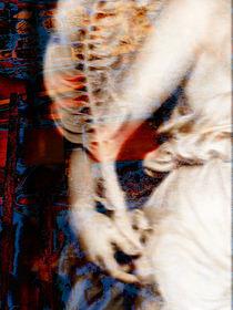 Con pluma by Ricardo Anderson