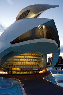 Valencia, Palau de les Arts 5 by Frank Rother