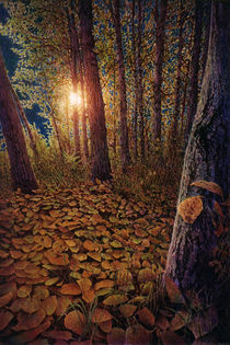forest leaves by Paul Segsworth