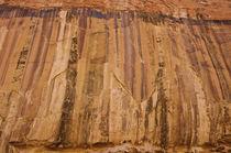 Desert Varnish von Barbara Magnuson & Larry Kimball