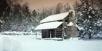 Cade's Cove cabin by Paul Segsworth