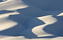 Wintery Dunes by Barbara Magnuson & Larry Kimball