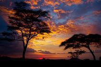 Serengeti Sunset by Víctor Bautista