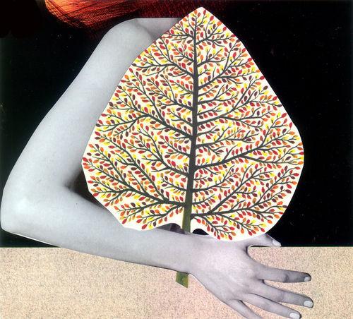 Drvo-list-1