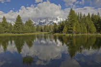 Grand Tetons at Schwabacher by Barbara Magnuson & Larry Kimball