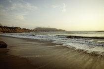SWALLOWING THE OCEAN by Georgina Avila