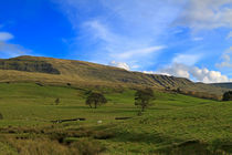 Mallerstang Dale in Cumbria UK by Louise Heusinkveld