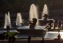 Fountains of the Trocadero, Paris by Louise Heusinkveld