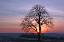 Winterlandschaft und Sonnenuntergang by Wolfgang Dufner